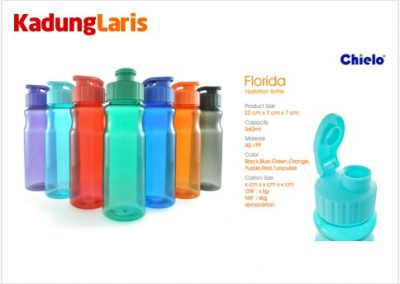 Tumbler Florida Hydration Bottle