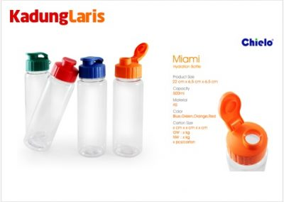 Tumbler Miami Hydration Bottle