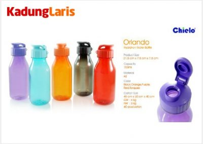 Tumbler Orlando Hydration Bottle