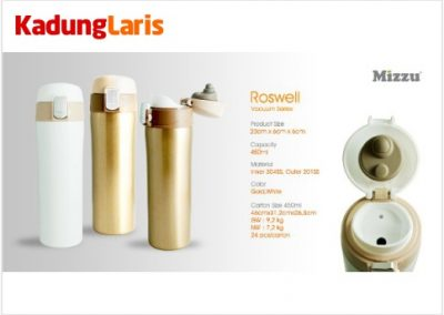 Tumbler Roswell 450 Vacuum Flask