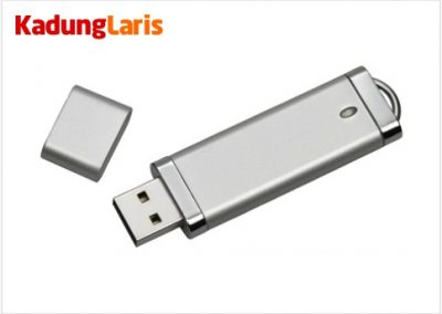 Flashdisk Plastik Chrome PL01
